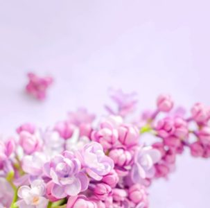 flowers-banner-large-min-303x300